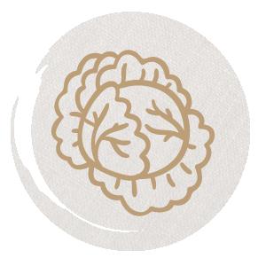 icono-ensaladas